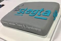 stegta_50th_cake